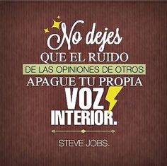 Wise Steve