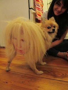 Andy Warhol Dog Costume