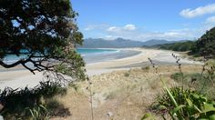 Whangapoua Beach.  Photos from a research trip to Great Barrier Island for my historical novel 'Flimsy'.