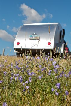 Wildflowers and a Teardrop Travel Trailer in Glacier National Park, Montana, August 12, 2011 (pinned by haw-creek.com)