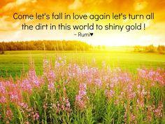 Let's fall in love again  ~Rumi