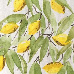 marinamuse @marinamusestudio graphic design lemon tree #watercolor #graphicdesign #fashiondesign #illustrator Watercolours, Illustrator, Haha, Plant Leaves, Lemon, Graphic Design, Plants, Painting, Instagram