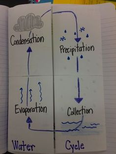 Water Cycle Foldable | Ever a Teacher: The Water Cycle