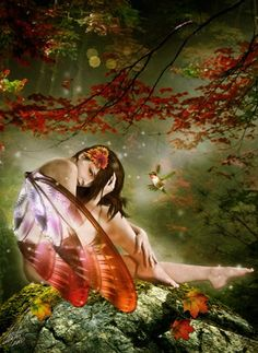 The colours of Fae.  ~The Autumn Fairy has come!! ;)