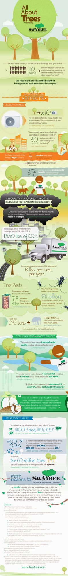 Facts about trees: The net cooling effect of a young, healthy tree is equivalent to 10 room-size air conditioners operating 20 hours/day. http://newswatch.nationalgeographic.com/2012/08/01/the-benefits-of-trees/