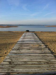 Parentis-Biscarrosse lake - Les Cottages du Lac ***