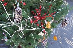 Create edible tree decor for wildlife