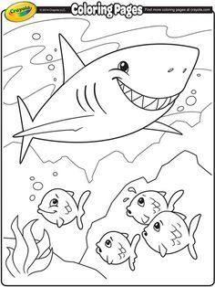 Shark Coloring Page Crayola Com Shark Coloring Pages Fish