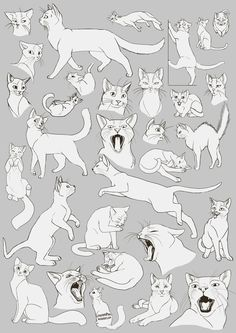 Free Art: Cats Cats Cats! by *aThousandPaws on deviantART