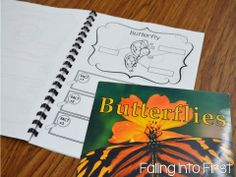 Insect unit and lesson plan ideas! Entomologist journals to record research.