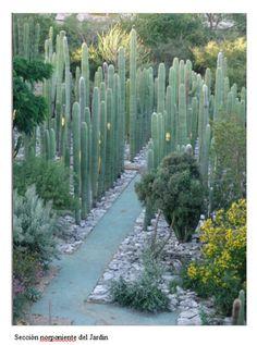 The Ethnobotanical Gardens of Oaxaca