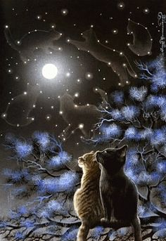 Reminds me of the Warrior cats series cats gazing up at the Star clan in the sky I Love Cats, Crazy Cats, Cute Cats, Warrior Cats, Animal Gato, Moon Art, Cat Drawing, Beautiful Cats, Beautiful Things