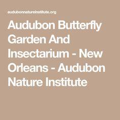 Audubon Butterfly Garden And Insectarium - New Orleans - Audubon Nature Institute