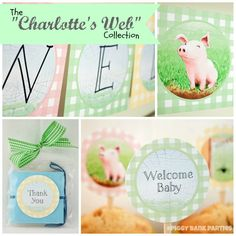 The Charlottes Web Baby Shower Party