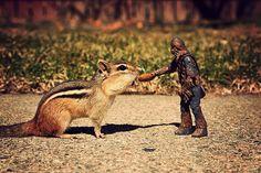 Let's Be Friends by powerpig, via Flickr