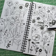 """Carolyn Gavin on Instagram: """"Finally getting to some floral sketches for @mtantau and @lillarogers """"Make Art that sells"""" Home Decor course. #flowers #florals #makeartthatsells #matshomedecor #mats #homedecor I used a @sakuraofamerica Pigma brush pen and Micron o.8"""""""