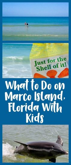 Things to do with kids and things to see on your next family vacation to Marco Island, including the Dolphin Study Eco-Tour and Cruise and the Naples Botanical Gardens.