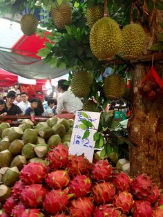 Exotic Fruits (Durian, Mangosteen, Dragon Fruit and coconut) at Fruit Market, Chinatown, Singapore