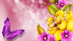 colorful flowers hd wallpaper - colorful flowers category