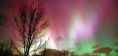 Gaze at the Aurora Borealis