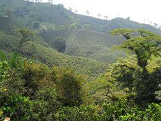 Chinchiná, Caldas, Colômbia