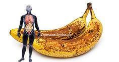 If you eat 2 bananas per day for a month, this is what happens to your body. The truth is that bananas are delicious super foods that provide your body with all the nutrients required for thriving. Abnormal Cells, Banana Contains, Eating Bananas, Filling Snacks, 6 Pack Abs, Salud Natural, Look Alike, Nature, Medicinal Plants