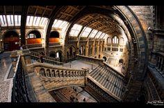 Natural History Museum, London, England  In thy Splendor,I rejoice by JonnyGoodboy