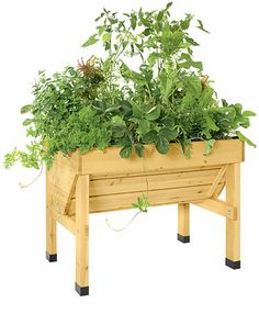 Compact VegTrug - Gardeners Supply. This is my final solution to the wildlife - put my veggies on the deck so they can't reach them!
