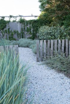 buried fence posts used as divider, architectural interest, rather than a hedge