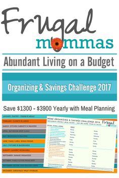 Organizing and Savings Challenge: Save $1300 - $3900+ Yearly