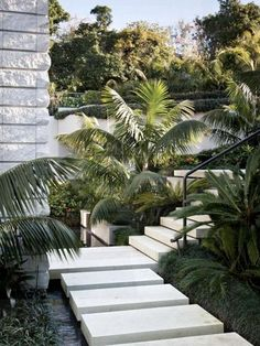 A landscape garden plan is only a starting point. Here you might like to check out some of our city garden design examples to get some inspiration. Tropical Garden Design, Tropical Landscaping, Backyard Landscaping, Love Garden, Shade Garden, Swimming Pool Designs, House Front, Garden Planning, Garden Inspiration