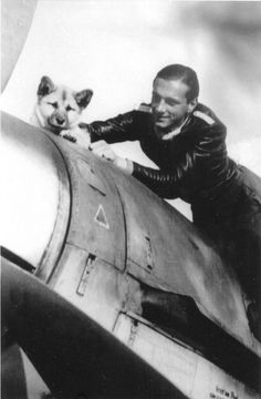 The pilot of the 4th Squadron of the 5th Fighter Squadron of the Luftwaffe (4. / JG5) Lieutenant Ernst Scheufele (Ernst Scheufele) with a puppy at Messerschmitt fighter Bf.109.