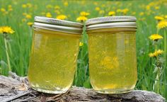 Here's my dandelion jelly recipe http://margsphotography.com/dandelion-jelly-recipe/