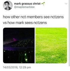 All of you are so pretty like grass.our grass, our NCTzen.<<< nO No nO i mEaNt LiKe PrEtTy Dream Chaser, Funny Kpop Memes, Mark Nct, Na Jaemin, Day6, Winwin, Taeyong, Kpop Groups, Jaehyun