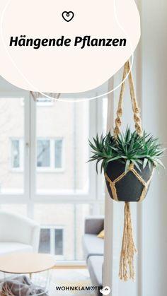 Zimmer- und Balkonpflanzen brauchen nicht immer einen Stehplatz. Mit den richtigen Blumentöpfen zum Aufhängen dekorierst Du Deine Wohnung natürlich schön. Im Beitrag liest Du, wie Du Deine hängenden Pflanzen dekorativ an der Fensterfront oder einer Wand befestigen kannst.