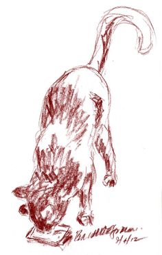 The Creative Cat - Daily Sketch Reprise: A Nip of Nip