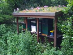 Sheltered bee hives.  Great idea to have living walls and even sides with their food growing!