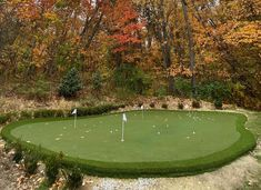 Our custom golf turf can be installed anywhere. We love this scenic spot for a putting green that was installed by our talented SYNLawn Michigan team. #synlawn #syntheticturf #golf #puttinggreen Golf Mats, Site Design, Design Consultant, Michigan, Grass, Golf Courses, Paradise, Canning, Landscape