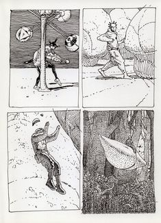 Moebius notebook: Viamor