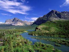 Montana christielynch  Montana  Montana