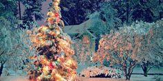 Natale: la frenesia e l'attesa - laCOOLtura