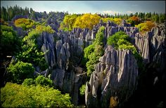 Kunming, Stone Forest, Yunnan Province
