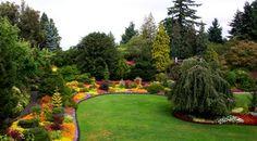 Queen Elizabeth Park Victoria Island, Visit Vancouver, Canada Eh, Queen Elizabeth Park, Honeymoon Planning, Weekend Getaways, Parks And Recreation, Park Photos, Travelogue