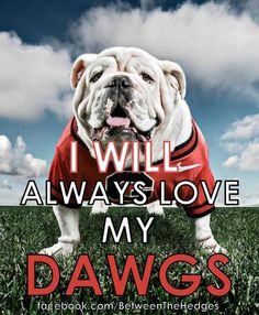 even though they just lost i will always love my dawgs