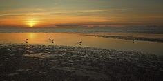 Andrea Potratz: Sonnenuntergang St. Peter Ording - Glasbild