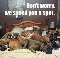 """Don't worry, we saved you a spot."