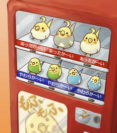 ¡Máquina expendedora de loros! Parrots exchanging machine? XD