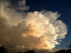 Toward the heavens...