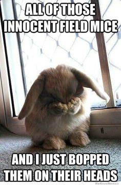 Bad bunny... This made me giggle :)