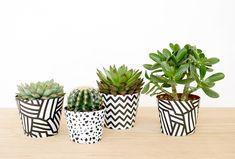 Flower Pot Art, Flower Pot Design, Painted Plant Pots, Painted Flower Pots, House Plants Decor, Plant Decor, Cactus E Suculentas, Pottery Painting Designs, Decorated Flower Pots